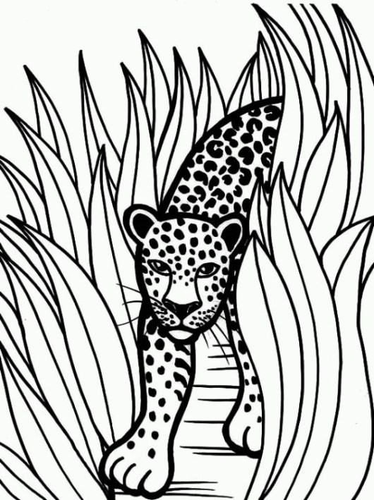 Printable Jaguar to Color and Use for crafts - Coloring Pages
