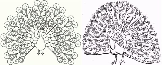 two-peacock-meet-coloring-pages