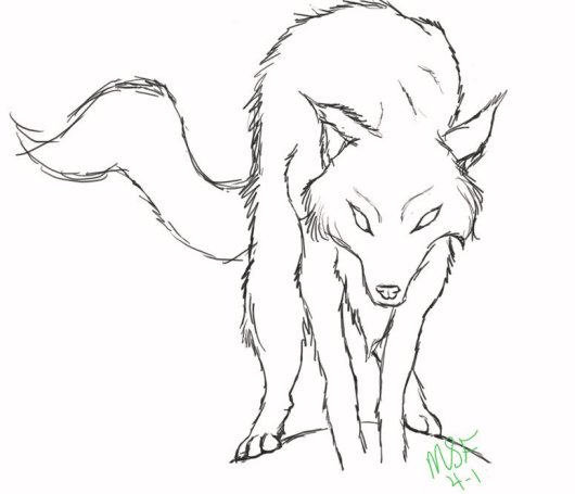 fox-wolf-coloring-sheets