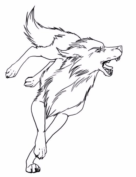 fox_wolf_fox_coloring_books