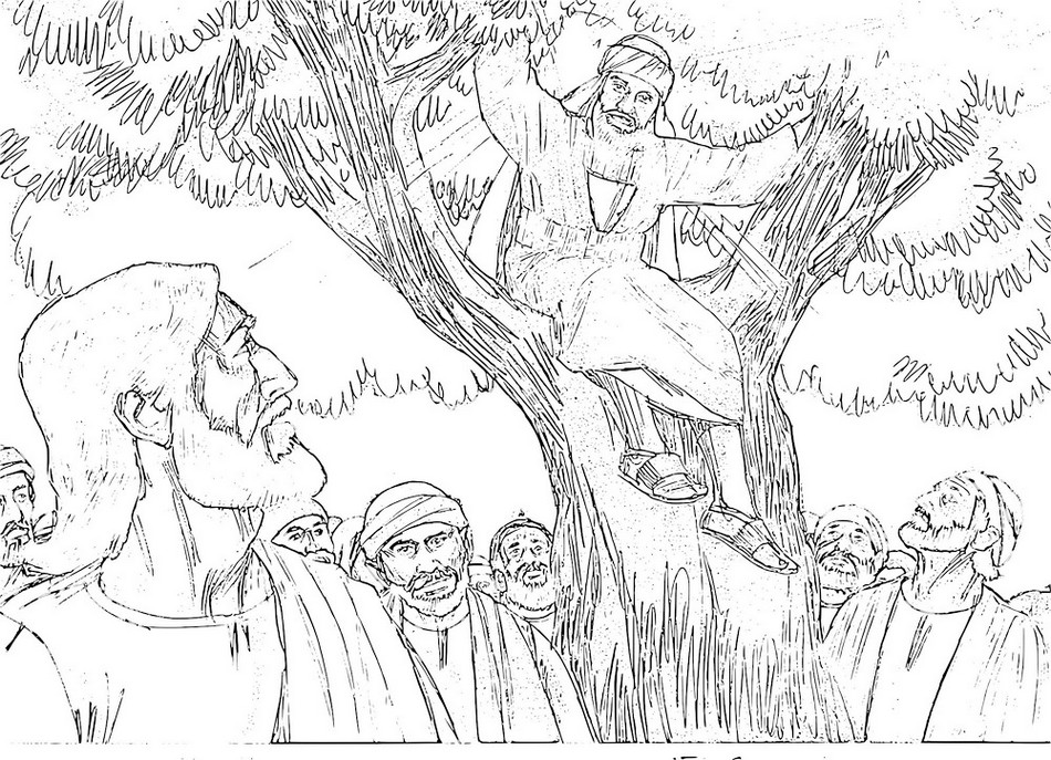 tree-zacchaeus-coloring-picture-real