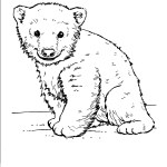baby-bear-winter-animal-coloring-book