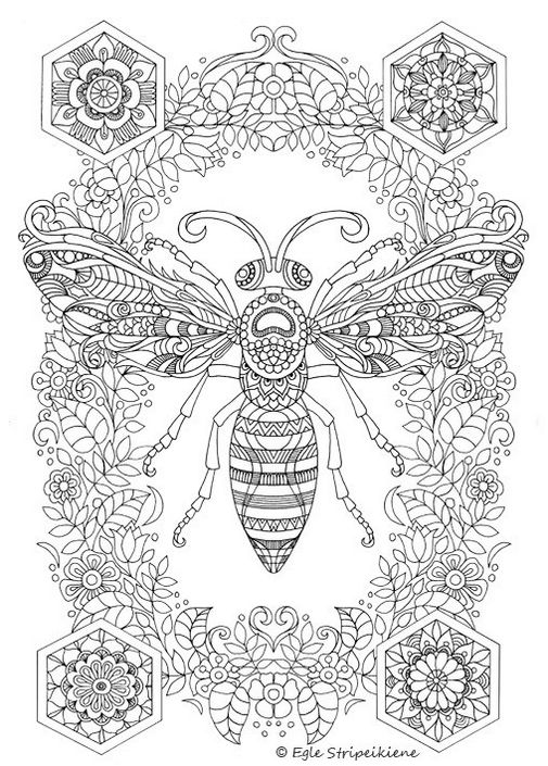 Butterfly Coloring Book Pages To Print