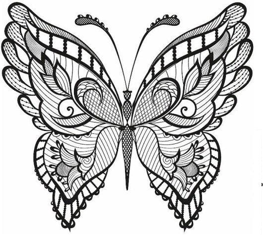 intricate-butterfly-print-out-drawing