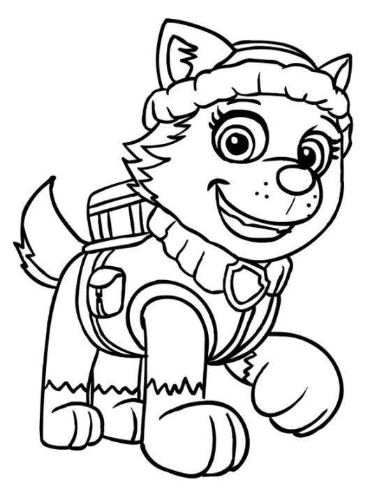 Top 10 Paw Patrol Nick Jr Coloring