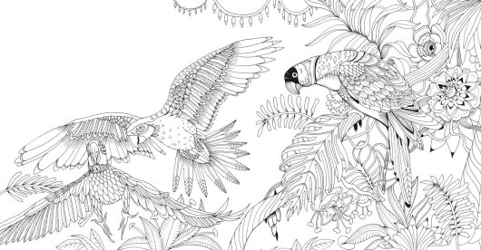 bird-coloring-picture-enchanted-forest