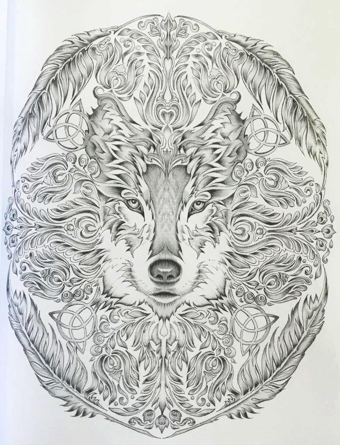 colour-my-sketchbook-colouring-book-fox