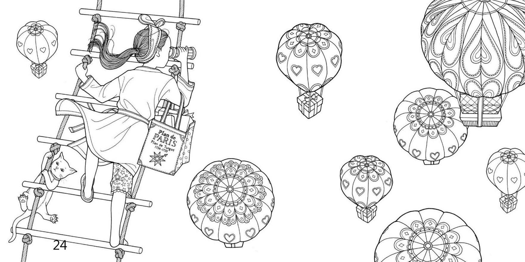 Hot Air Balloon Filed Skies The Night Voyage