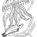 jellyfish-coloring-pictures