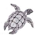 mandala-turtle-coloring-book