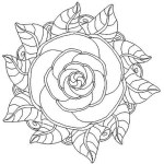 mandala_rose_coloring_picture