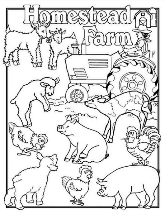 Homestead Farm And Tractor Coloring Page Farm Animal