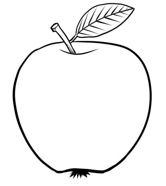 Apple Clip Art Picture To Color