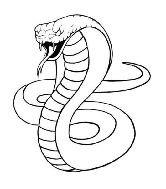 King Cobra Snake Coloring Sheet