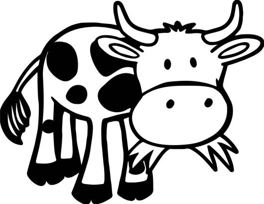 cow farm animal coloring book