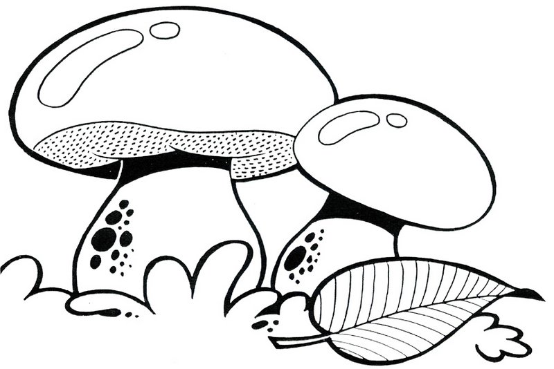 mushroom above ground coloring picture