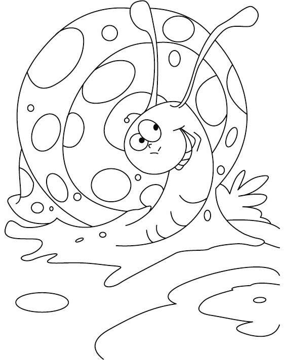 snail coloring book for 3 8 years old