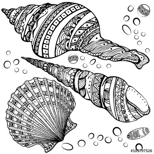 Mandala seashell coloring page for Sea shell coloring pages