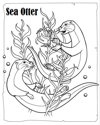 Love these Cunning Otter Coloring Pages Coloring Pages