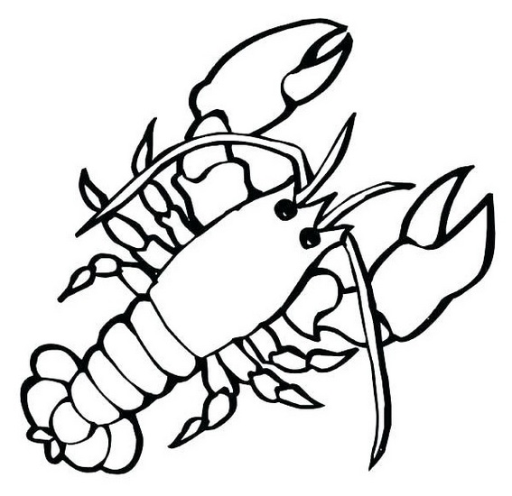 large marine crustaceans lobster coloring pages for small