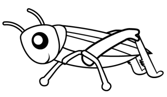 Close Up Grasshopper Page Coloring Pages