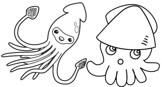 squid coloring pages # 48