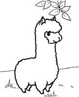 Best Alpaca Coloring Page