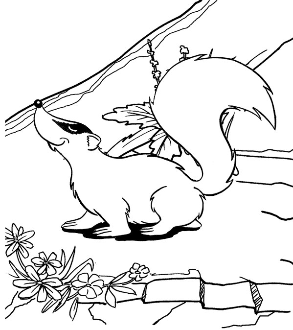 Cute and Funny Badger Coloring Page