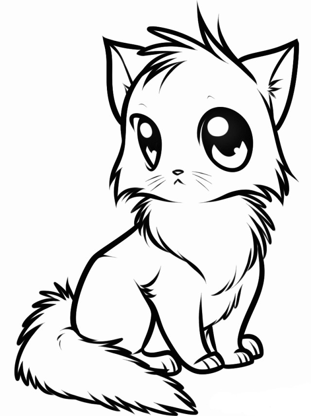 A kitten Coloring Pages - Cute Animal Coloring Pages - Coloring