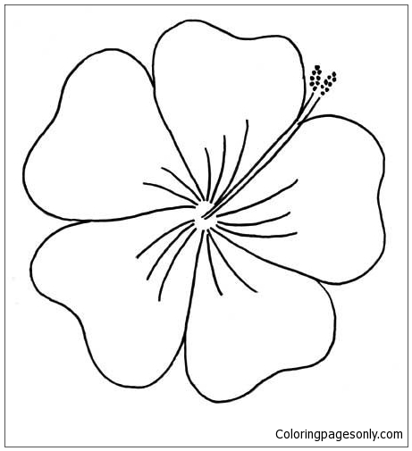 Hibiscus From Moana Disney Coloring Page Free Coloring