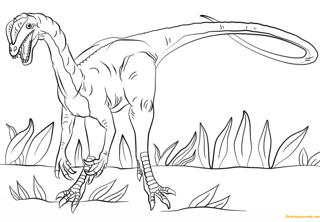 Jurassic Park Dilophosaurus Coloring Page Free Coloring Pages Online
