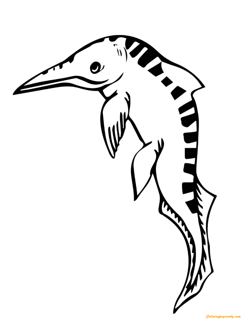 Mixosaurus Ichthyosaur Coloring Page Free Coloring Pages Online