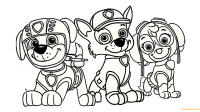 Paw Patrol Rocky, Skye And Zuma Coloring Page - Free ...
