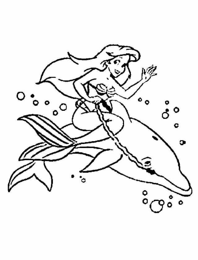 Little Mermaid rides a dolphin Coloring Pages - Dolphin Coloring