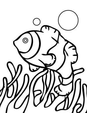 coral reef coloring pages drawing fish printable sheets barrier getdrawings popular