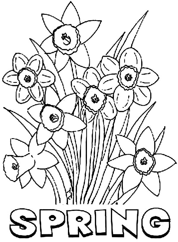 Spring flower coloring pages to download and print for free | spring flower coloring pages