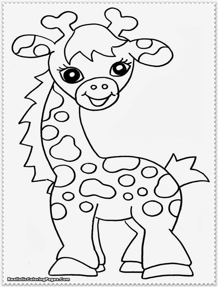 Jungle safari coloring pages download and print for free | printable colouring pages jungle animals