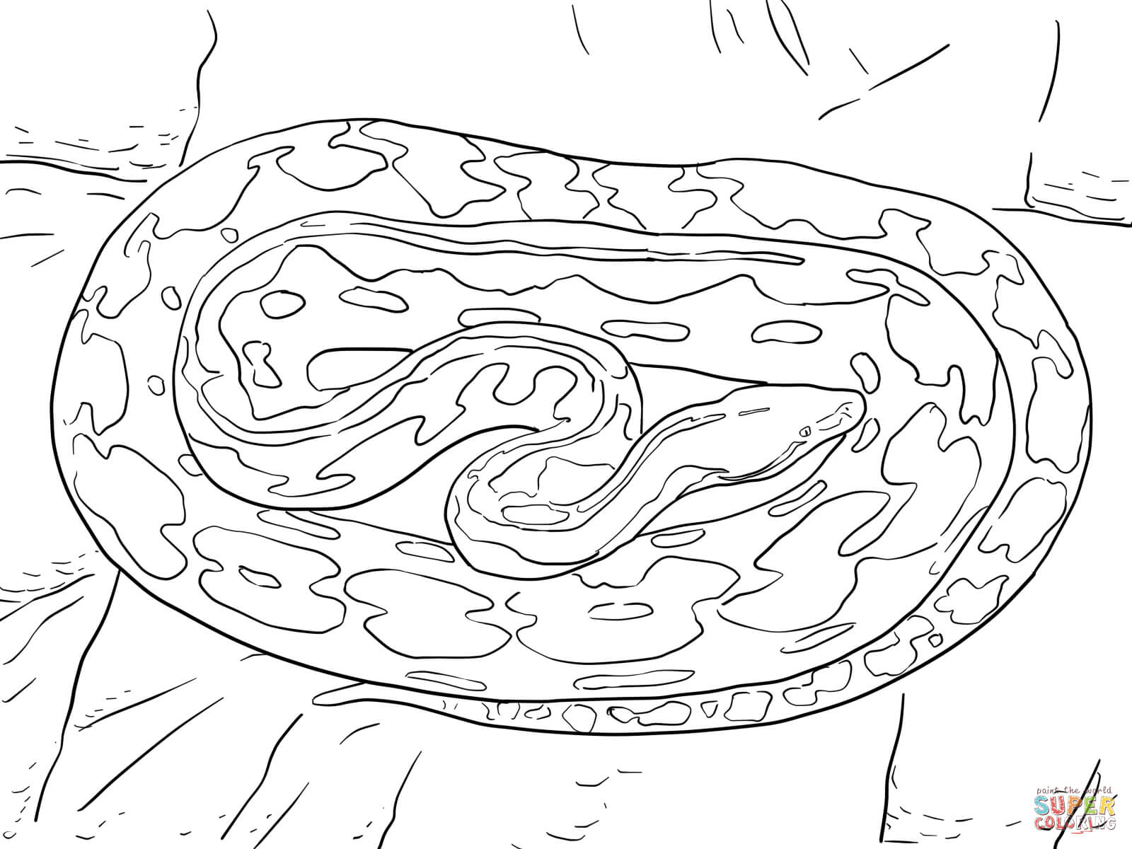 Python Coloring Pages Download And Print For Free