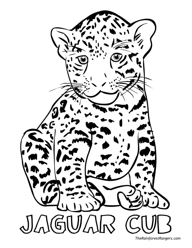 Free Printable Jaguar Car Coloring Pages Download At