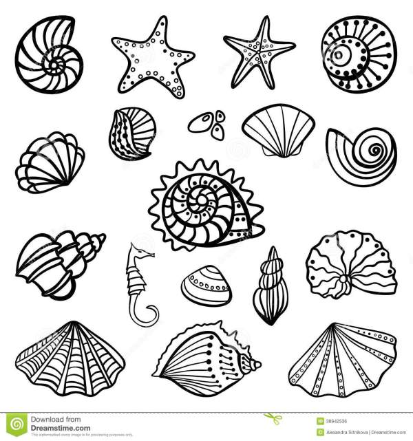 Beach shells coloring pages download and print for free
