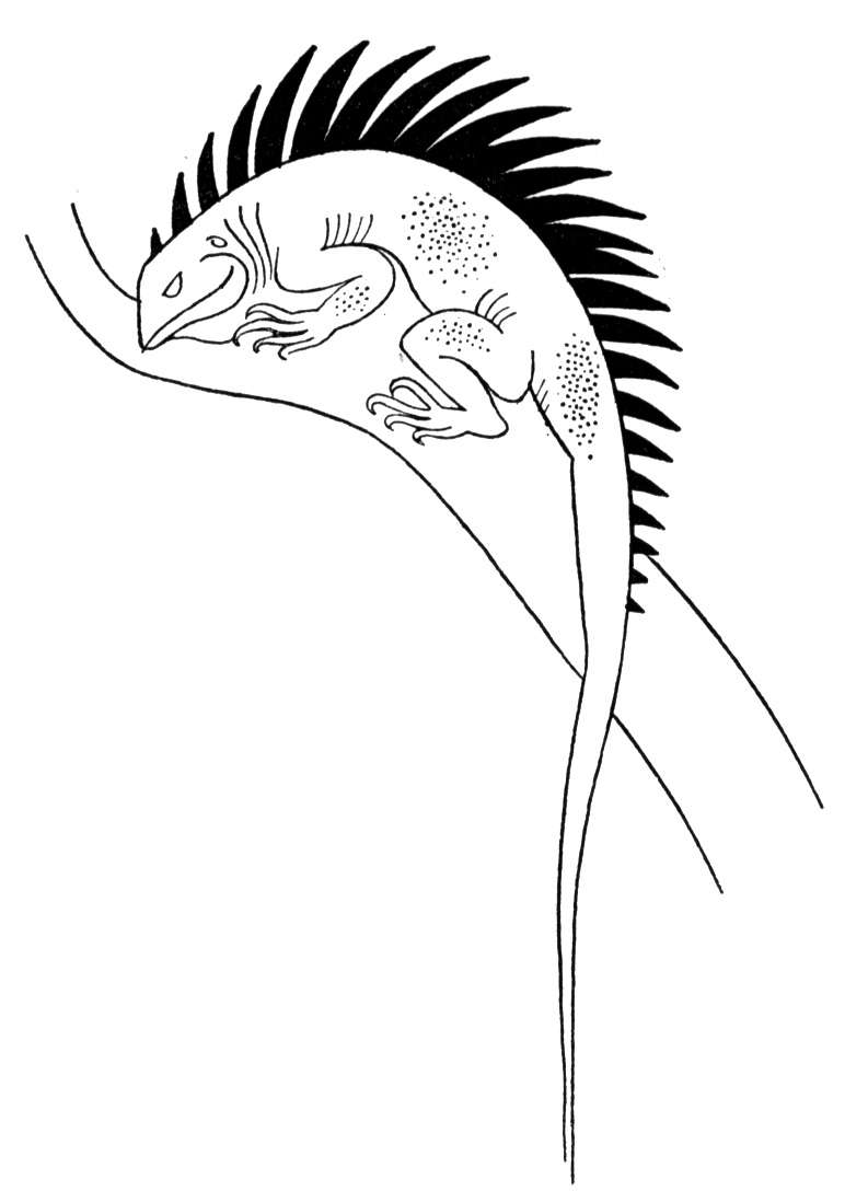 Monitor Lizard Coloring Pages Download And Print For Free