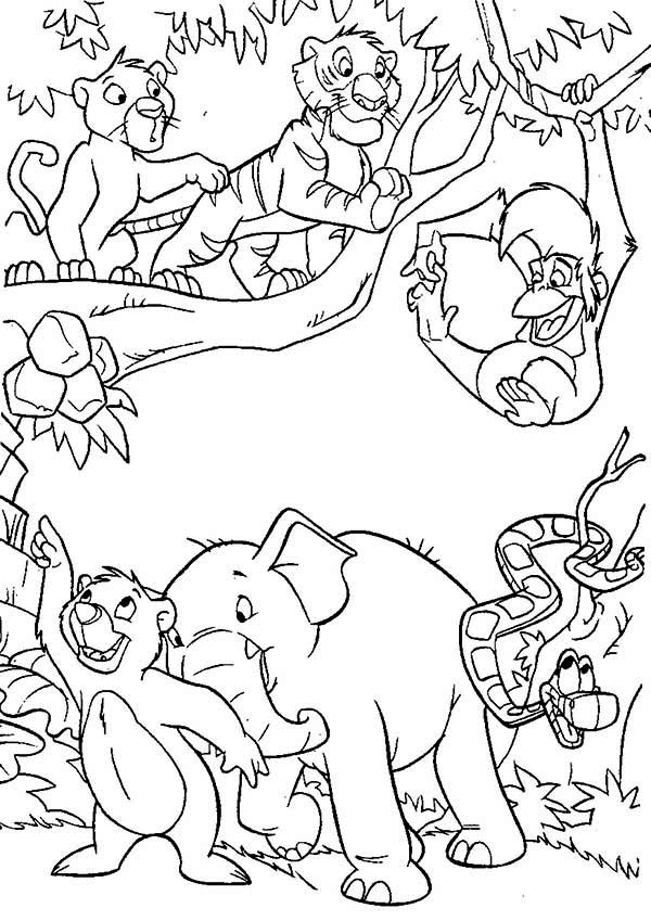 Jungle book coloring pages to download and print for free | jungle animals coloring pages for kindergarten