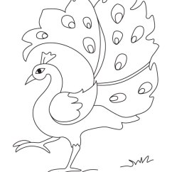 Peacock Bird Diagram Freightliner Starter Wiring Feathers Coloring Pages Download And Print For Free