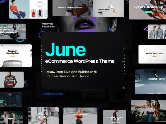 June WordPress eCommerce theme