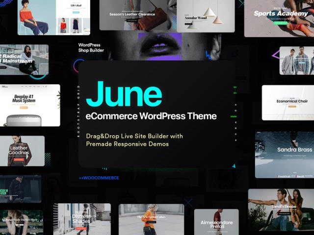 June WordPress eCommerce theme