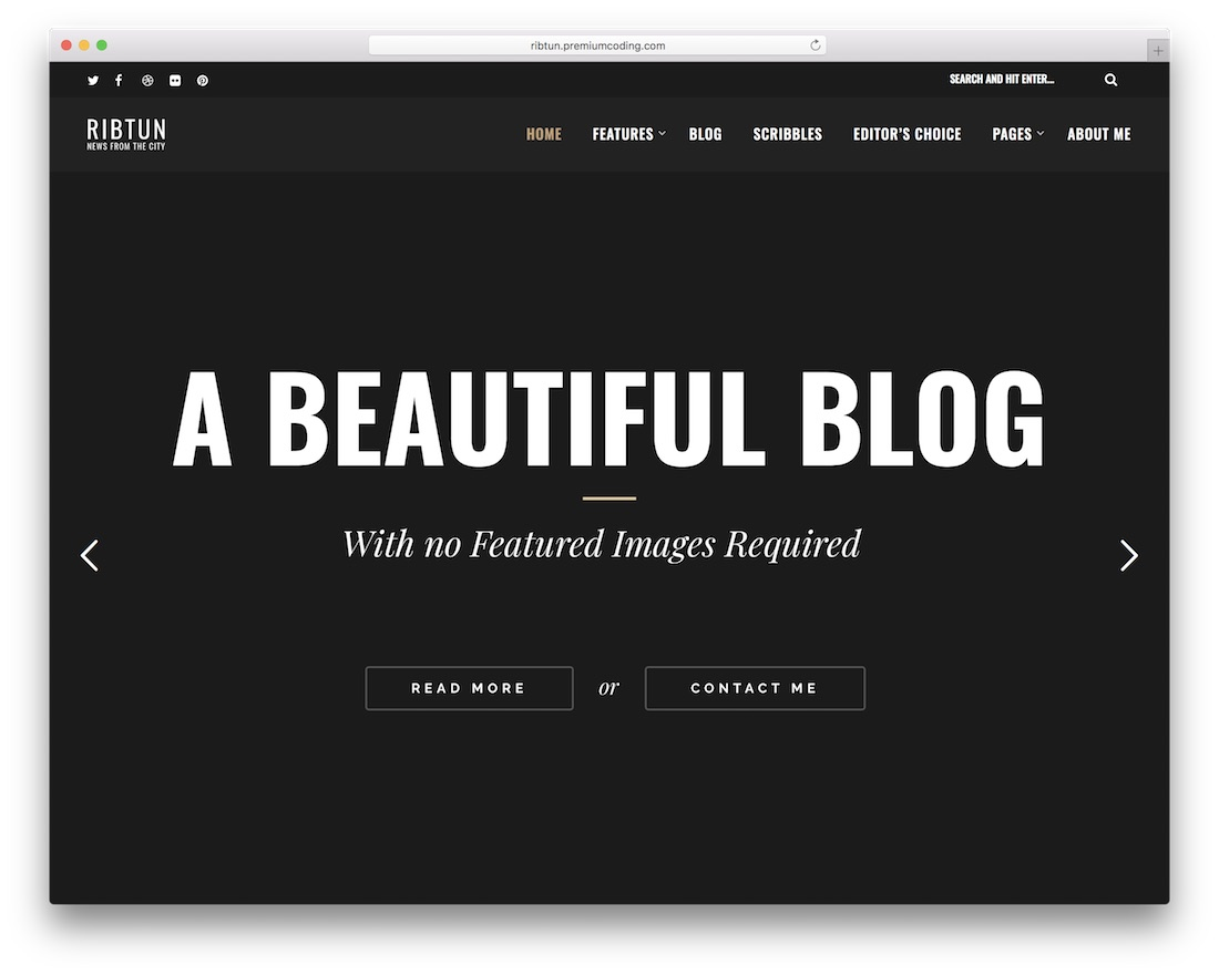 26 Simple Wordpress Themes For Writers Amp Authors