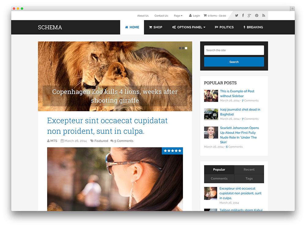 schema seo freindly blog theme