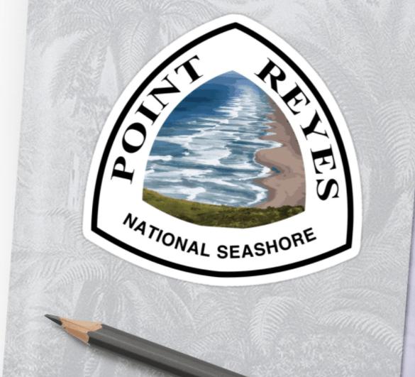 Point Reyes National Seashore sticker by NyleBuss