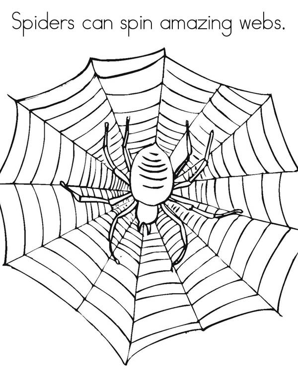 spider web coloring page # 58