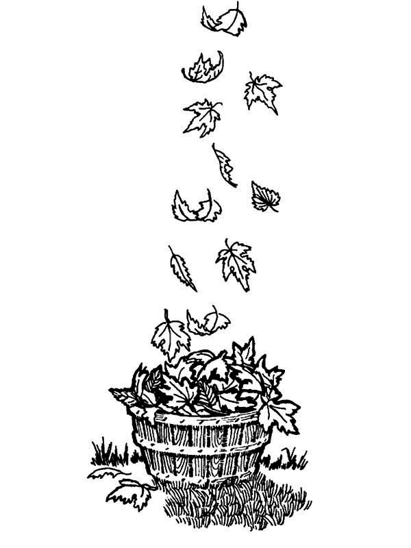 Wooden Bucket Full Of Fall Leaf Coloring Page : Color Luna